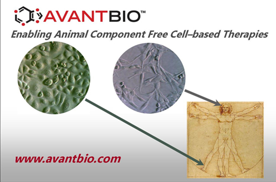 http://www.avantbio.com/wp-content/uploads/AVB-home-image-cell-therapy.jpg